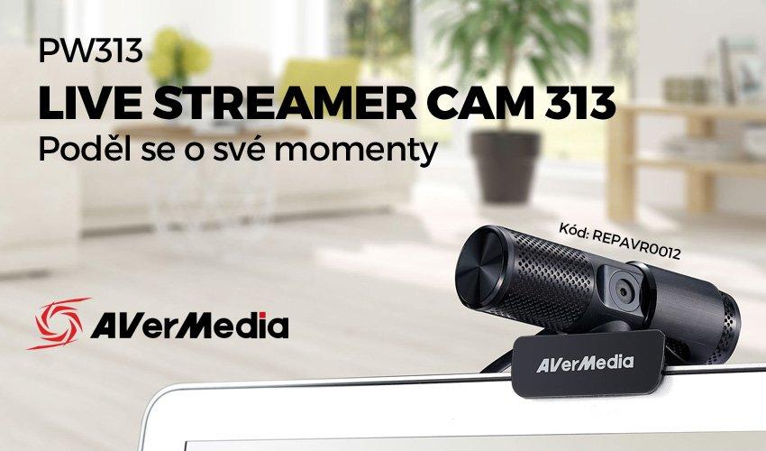 PW313 Live Streamer Cam 313.