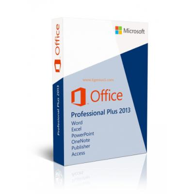 Software MS Office Professional Plus 2013