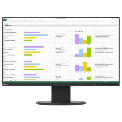 LED monitor EIZO EV2450-BK 23,8""