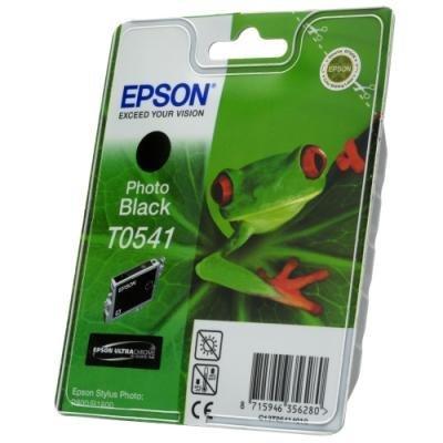 Inkoustová náplň Epson T0541 foto černá