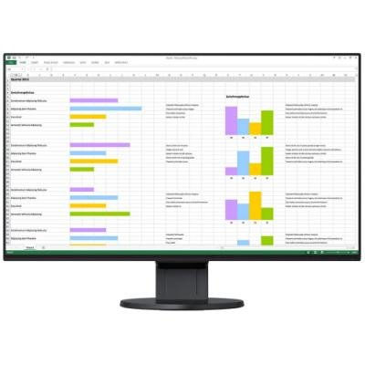 LED monitor EIZO FlexScan EV2451-BK 23,8""