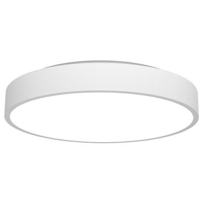 IMMAX NEO RONDATE Smart stropní svítidlo 80cm 65W bílé