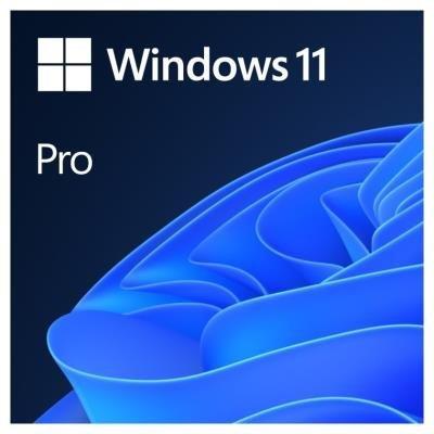 Microsoft Windows 11 Pro 64-bit ENG