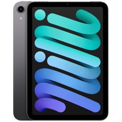 Apple iPad mini Wi-Fi 64GB šedý