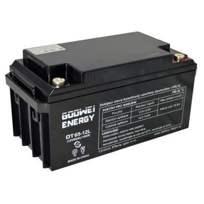 Baterie GOOWEI ENERGY OTL65-12
